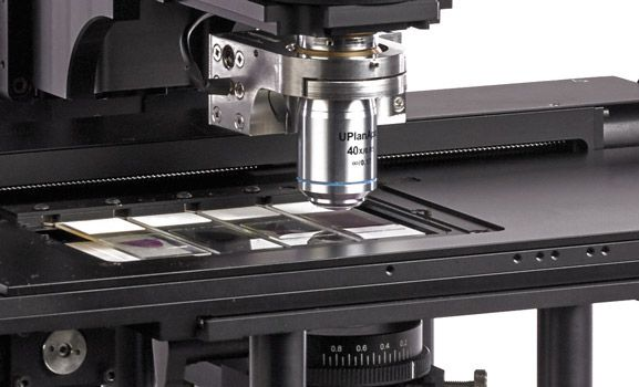 automate-your-microscope-motorized-xy-and-z-stages