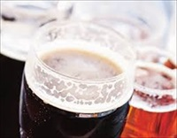 Determination of Organic Acids in Beer Samples
