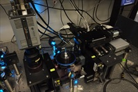Optical set-up of the specially-designed four-lens selective plane illumination microscope showing the dual Andor Zyla sCMOS cameras
