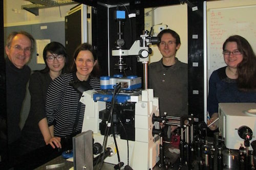 The Molecular NanoScience Group at ISMO
