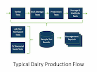 Typical dairy production flow