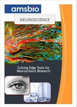 Neuroscience catalogue