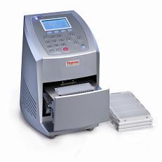 Thermo Scientific Piko Thermal Cycler
