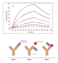 The RD Team At Bio Rad AbD Serotec In Munich Has Developed A New Type Of Specific Antibodies