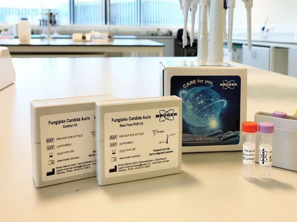 Fungiplex Candida Auris RUO Real-Time PCR Kit